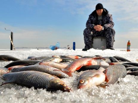http://m1.bfm.ru/news/maindocumentphoto/2011/03/02/rybak-3.jpg